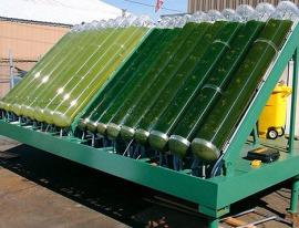 20090514-algae-bioreactor
