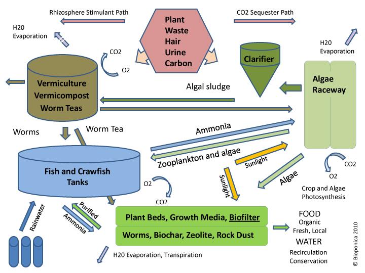 Bioponica Flow Chart